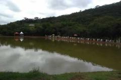 1-camp-varandao-003
