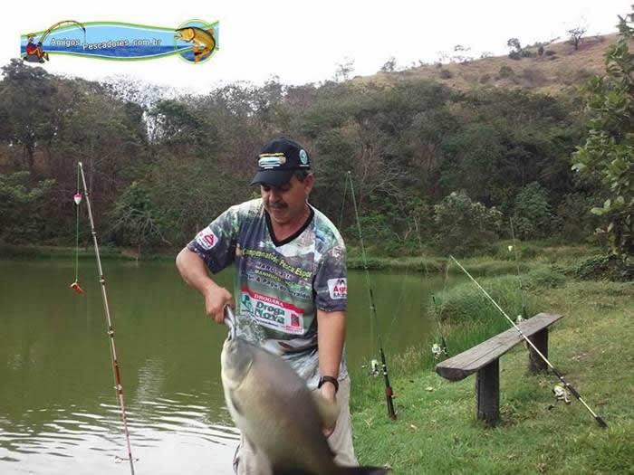 pescaria-barra-alegre004