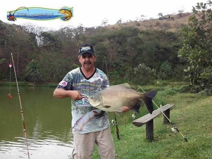 pescaria-barra-alegre006