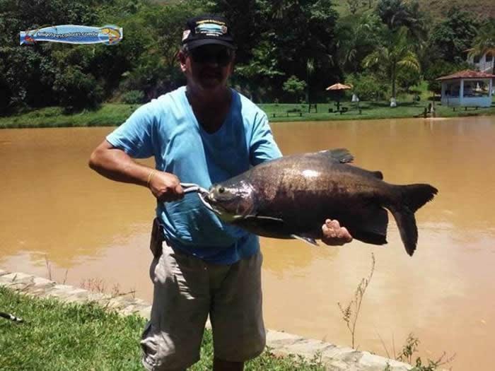pescaria-barra-alegre011