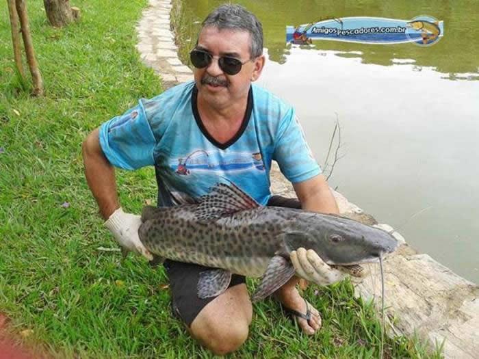 pescaria-barra-alegre016