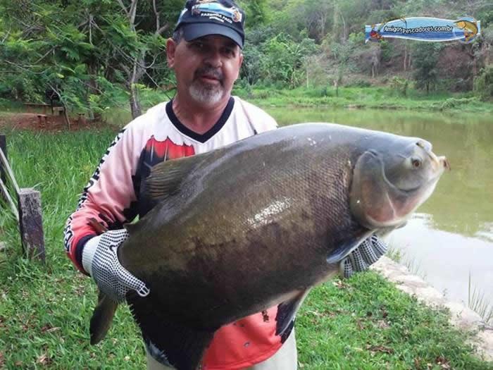 pescaria-barra-alegre043