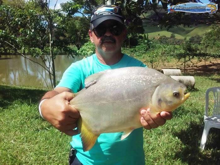 pescaria-barra-alegre064