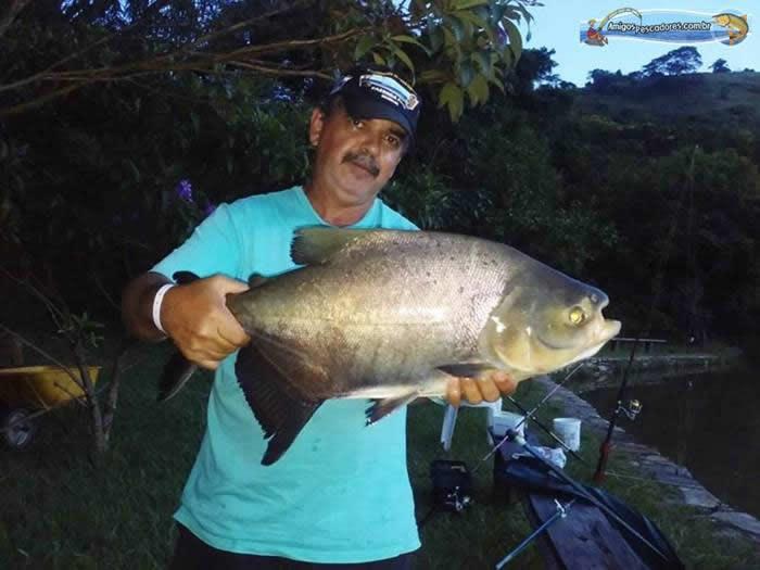 pescaria-barra-alegre070
