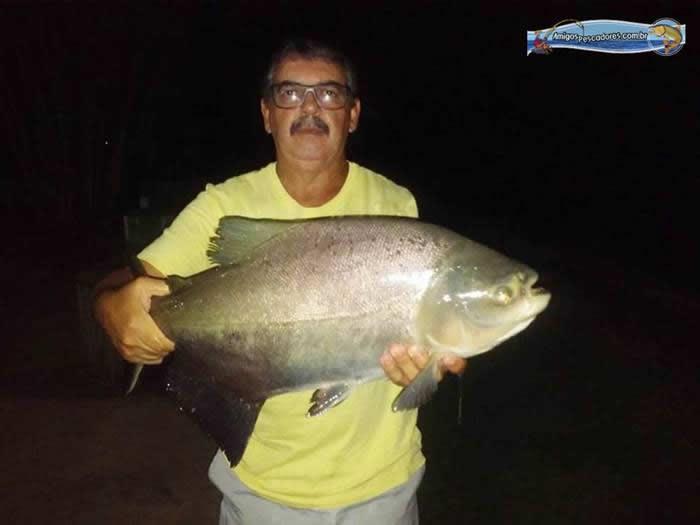 pescaria-barra-alegre073
