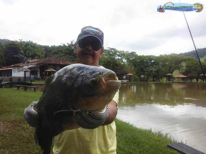 pescaria-barra-alegre077