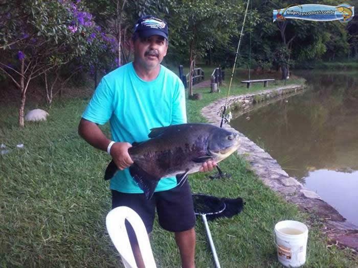 pescaria-barra-alegre078