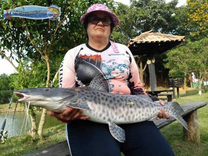 pescaria-barra-alegre097