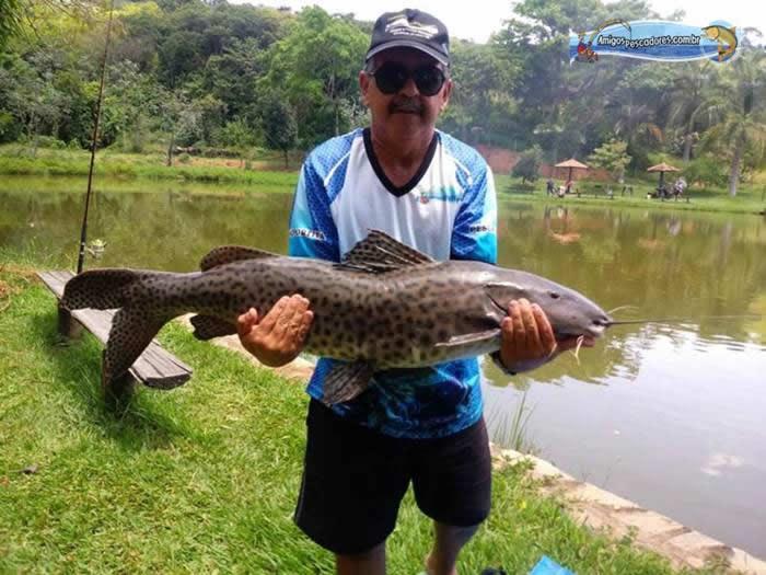pescaria-barra-alegre104