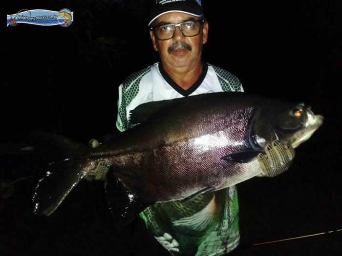 pescaria-barra-alegre113