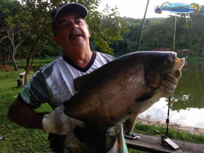 pescaria-barra-alegre115