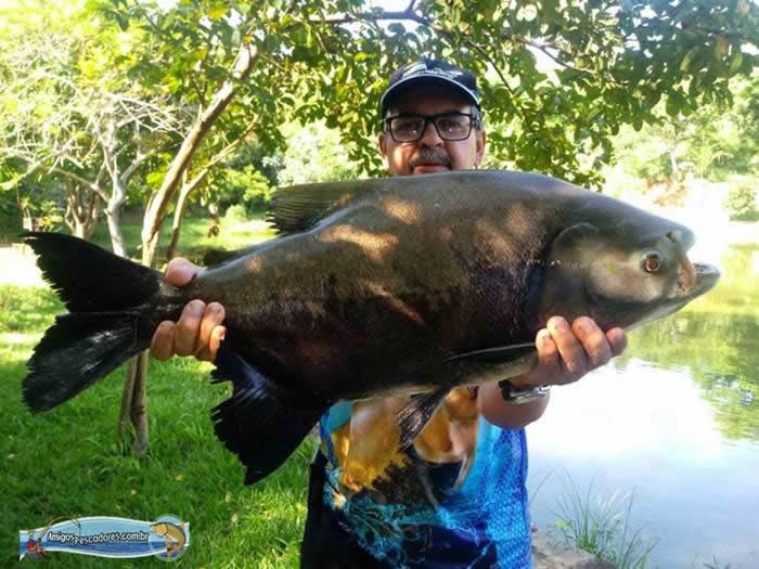 pescaria-barra-alegre125