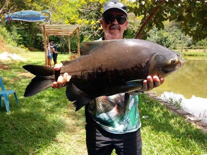 pescaria-barra-alegre139