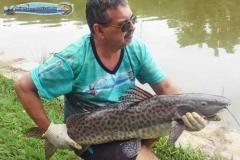 pescaria-barra-alegre018