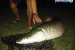 pescaria-barra-alegre050