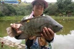 pescaria-barra-alegre098