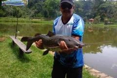 pescaria-barra-alegre120