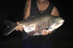 pescaria-barra-alegre124