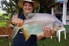pescaria-barra-alegre134