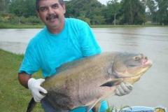 pescaria-retiro-das-lages-003