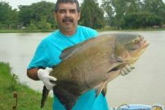 pescaria-retiro-das-lages-004