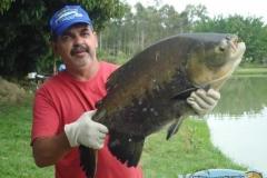 pescaria-retiro-das-lages-029