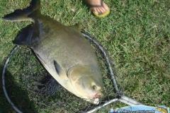 pescaria-retiro-das-lages-036