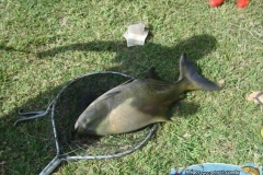 pescaria-retiro-das-lages-037