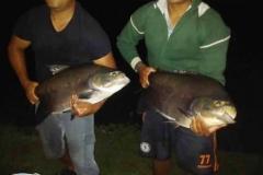 varandao-pesque-pague035