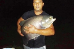varandao-pesque-pague052