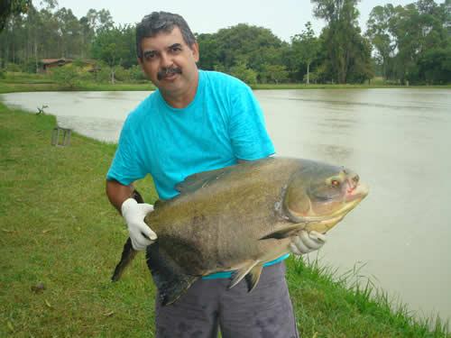Cléber Luiz Pereira - proprietário do Amigos Pescadores