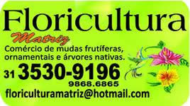 floricultura-matriz