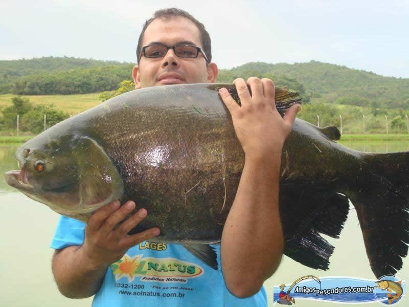 pescaria-retiro-das-lages