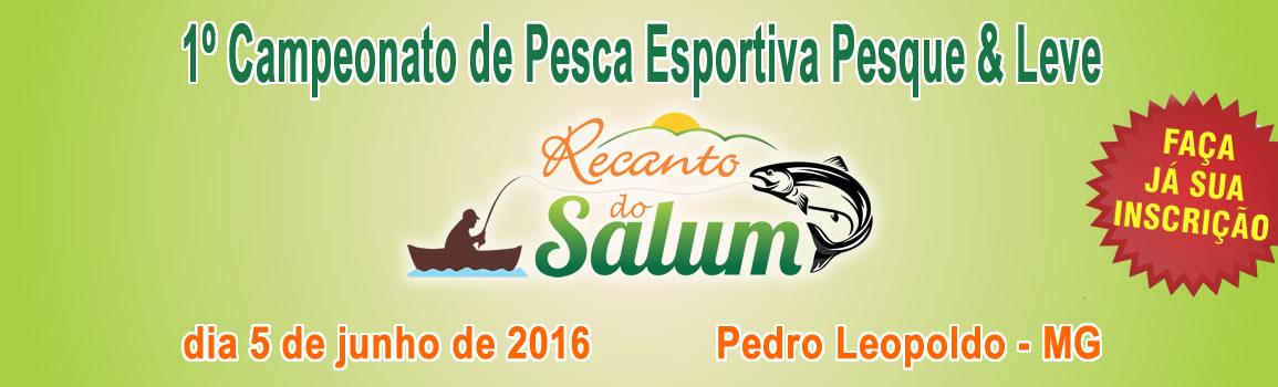 slide-rsalum-2016