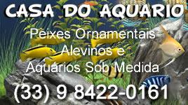 casa-do-aquarioo-268x1501